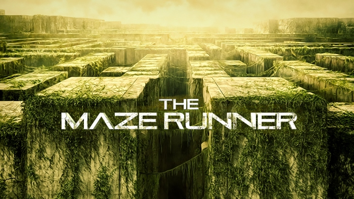The Maze Runner: Looking for the Big Picture